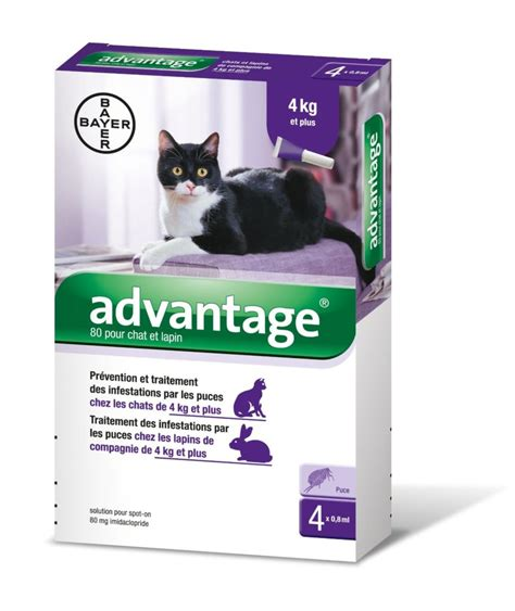 katzen zeckenschutz und katzenflohmittel test