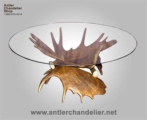 Moose Antler Chandelier by Real Antler Moose Coffee Table Deer Rustic Lighting