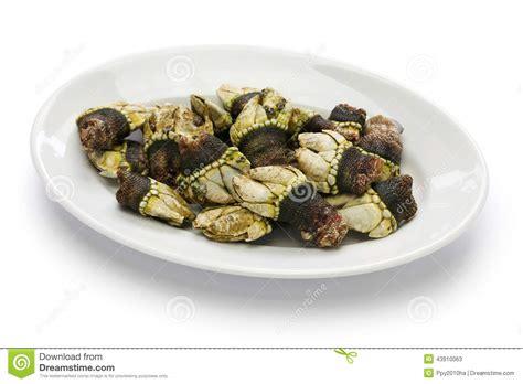 cuisine espagnole tapas bernache d 39 oie bouillie cuisine espagnole de tapas photo