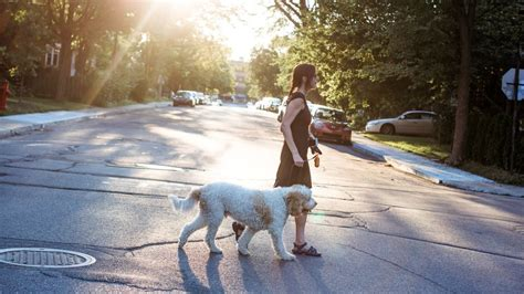 neighborhoods  retire   america