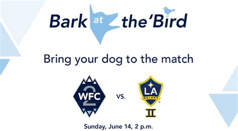 Bark At The Bird Bring Your  Ee  Dog Ee   To A Whitecaps Fc  Match