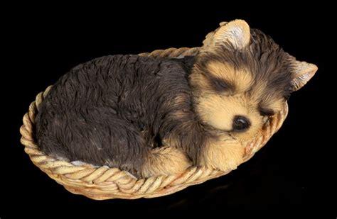 hund  koerbchen figur yorkshire terrier wwwfiguren