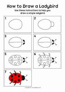 How To Draw A Ladybird Instructions Sheet  Sb12110