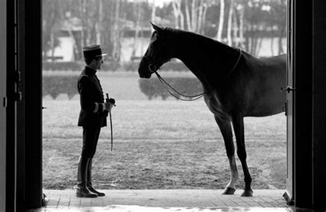 cadre noir de saumur le cadre noir de saumur luxury equestrian style