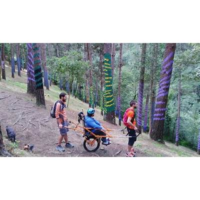The Oma Forest in a Joëlette wheelchair - Viajes por Euskadi