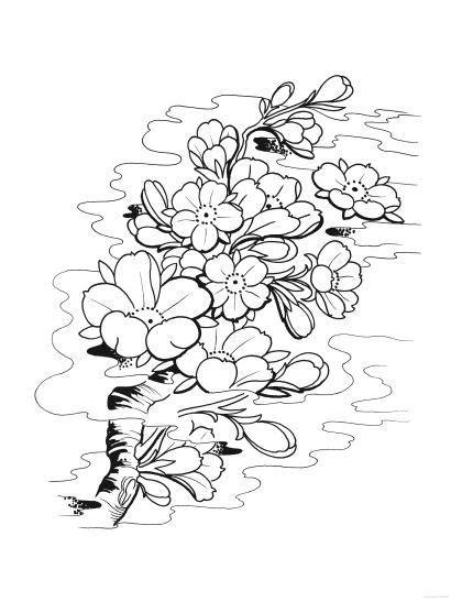 art book tattoo - Pesquisa Google   Hình xăm hoa, Xăm và Hình xăm