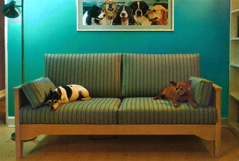 dog friendly sofa fabric pet resistant cat or dog friendly furniture sofas and chairs