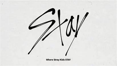 Stray Fandom Stay Skz Names Straykids Nine