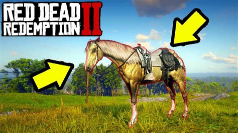 rdr2 horses horse dead redemption