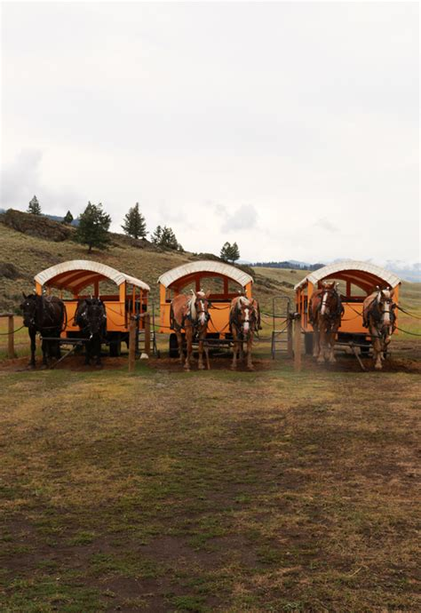 It's made w/ bold coffee forward flavors and top notch ingredients. Old West Wagon Cookout at Yellowstone's Roosevelt Lodge - Suburban Homestead