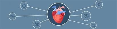Medical Disease Heart Health Problems Sgu Pulse