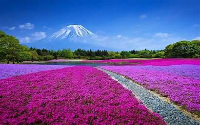 Japan Scenery Fuji Landscape Mt