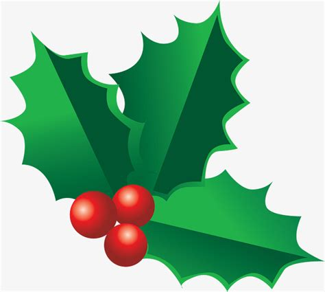 holly decorations  christmas holly clipart leaves