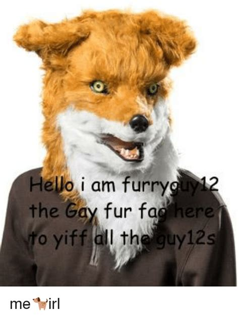 Gay Dog Meme - hello i am furry the gay fur fac here o yiff all the guy12s fac meme on me me