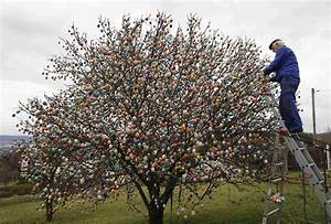 50-year, Tradition, Couple, Trims, Tree, With, 10, 000, Easter, Eggs