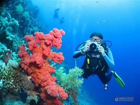 Underwater Dive - 10 starter tips to get the best underwater photos scuba