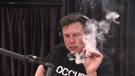 tesla ceo elon musk smokes weed  drinks whiskey