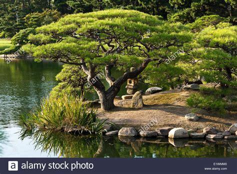 beautiful garden interesting design ideas to inspire you