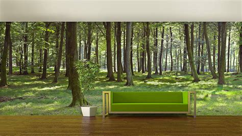 woodland forest  adhesive wallpaper  oakdene designs