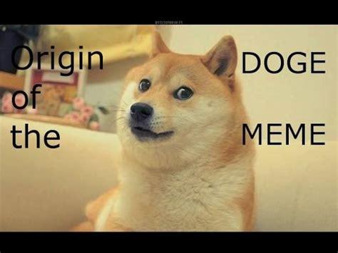 Doge Meme Origin - origin of the doge meme youtube
