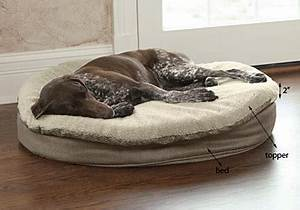 round memory foam dog bed topper round memory foam dog With big round dog bed