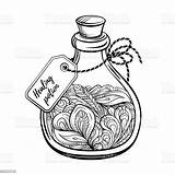 Potion Magic Bottle Coloring Calming Graphic Antistress Abstract Alchemist Alchemy sketch template