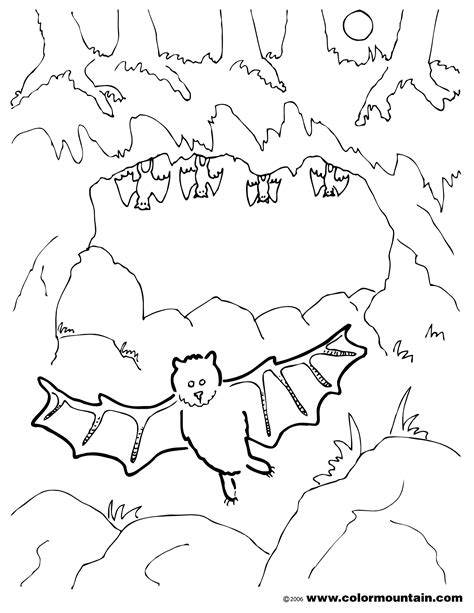HD wallpapers printable coloring pages realistic animals