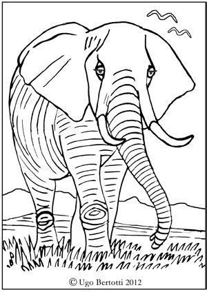 elefante africano da colorare mammiferi da colorare