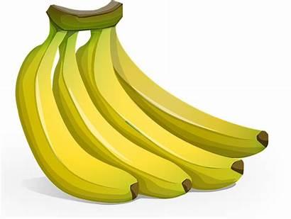 Banana Clipart Clip Bunch Bananas Cliparts Banen