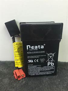 6 Volt Battery Neata Reata Nt6  20hr For
