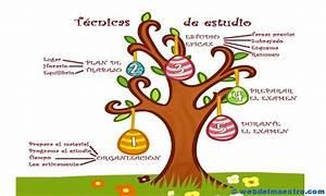 Técnicas: estudio primaria Web del maestro