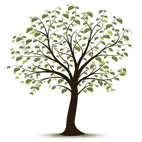 Family Tree Images Free Family Tree Clipart Pictures Clipartix