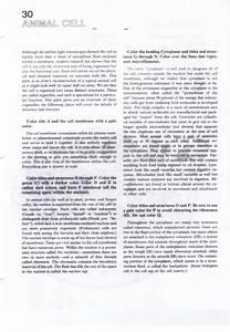 Pearson Education Inc Publishing As Pearson Prentice Hall