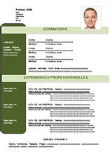 25 best ideas about exemple de cv word on lettre de motivation curriculum vitae un