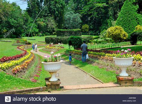 Botanischer Garten Sri Lanka by Royal Peradeniya Botanical Gardens Stock Photos Royal