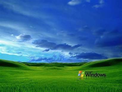 Xp Windows Grass Wallpapers Desktop Backgrounds Themes