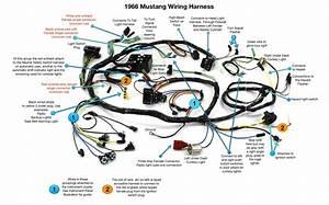 Mustang Wiring Harnes