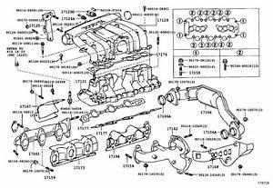 1994 Toyota 4runner Gasket  Air Surge Tank To Intake