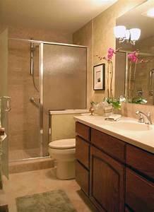 New, Small, Bathroom, Remodel, Ideas, Concept