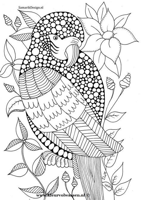 Kleurplaat Volwassenen Tijger by Kleurplaat 12 Wijsbeek Kleuren Voor Volwassenen