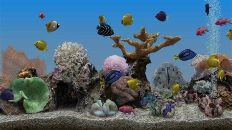 marine aquarium 3 3 android apps on play