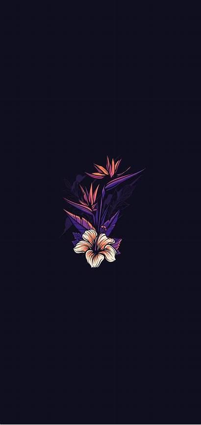 Phone Dark Amoled Wallpapers Flower