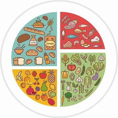 Diet Healthy Clipart Nutrition Breakfast Transparent Infographic