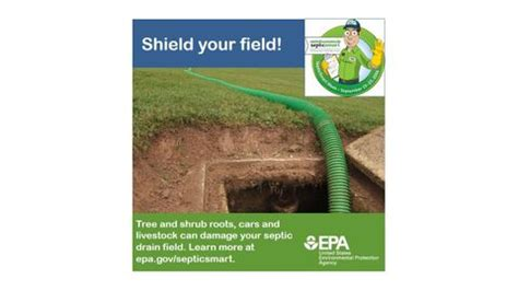 They are excellent for the compost pile! Septic Tank Cleaning | Allentown, PA | Allstate Septic Systems