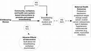 Systematic Review Of Breastfeeding Programs And Policies