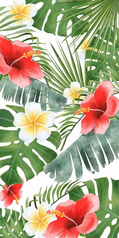 Tropical Iphone Floral Transparent Aesthetic Flower Wallpapers