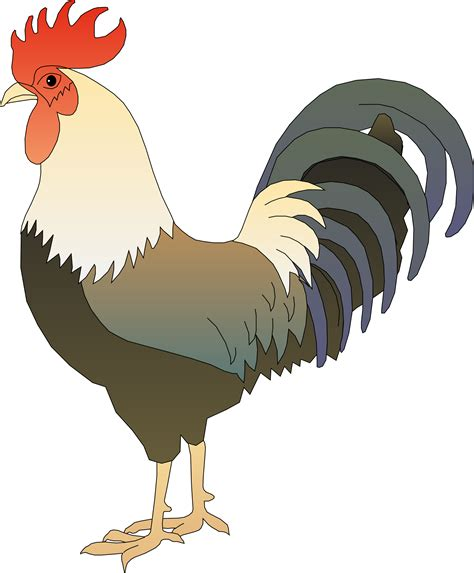 Rooster Clipart Rooster Clipart Ayam Pencil And In Color Rooster Clipart