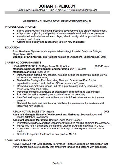 chronological resume sle marketing business development