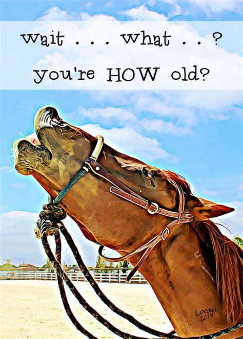 horse laugh   fun birthday card great