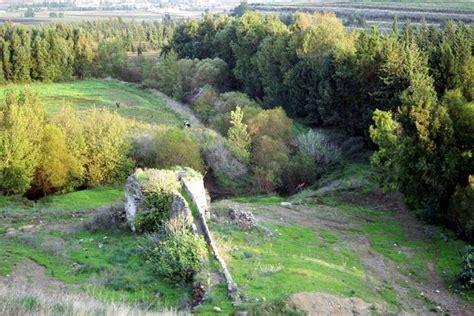 Iyad: Syria Nature